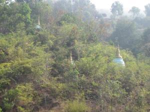 vue depuis le bouddha géant
